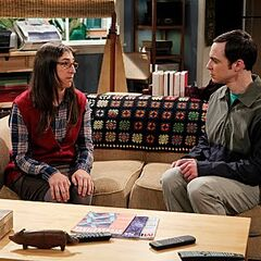 Amy points out that despite Sheldon's intelligence, his emotions are equivalent to those of normal people