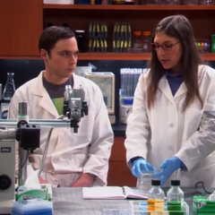 Sheldon at Amy's lab.