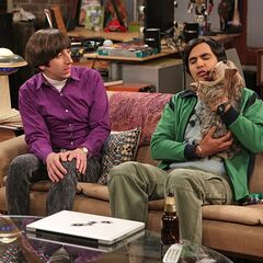 Creeped out by Raj's attention to his dog.