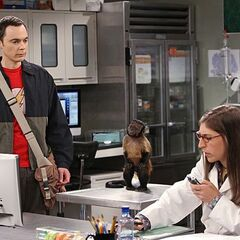 Sheldon telling Amy that she can take him home now.