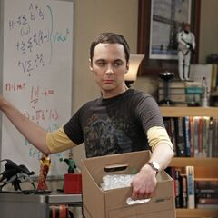 Sheldon packing up Leonard's collectibles.