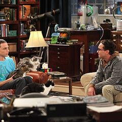 Leonard trying to talk to Sheldon about his cats and the loss of Amy.