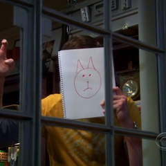 Sheldon using a drawing of a cat's face to scare the bird.