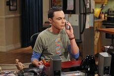 Sheldon7.03