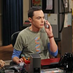 Sheldon on the phone at his desk.