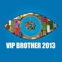 Big Brother Bulgaria VIP 5 Logo