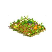 Plantao de verduras