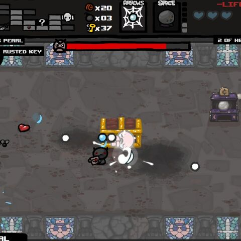 A bugged Isaac fight.