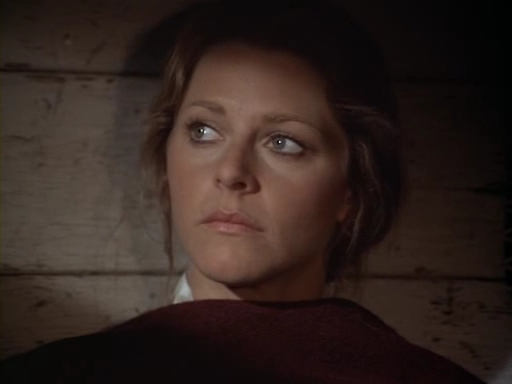 File:The.Bionic.Woman.S03E01.DVDrip.XviD-SAiNTS.avi 002732040.jpg