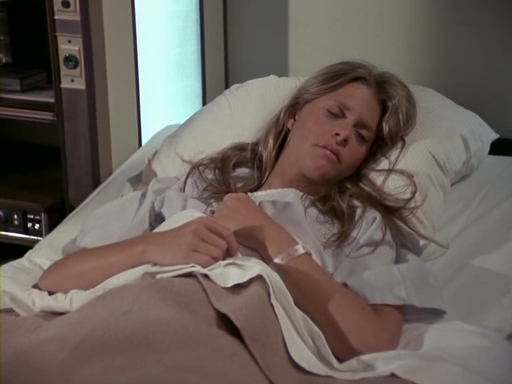 File:The.Bionic.Woman.S03E04.DVDrip.XviD-SAiNTS.avi 001249600.jpg