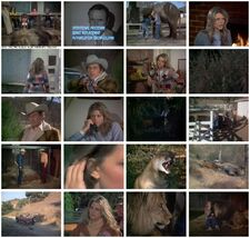 Th-the.bionic.woman.s01e04.claws.dvdrip.xvid-saints