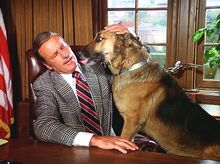 Rancho Outcast - Oscar having a wonderful time with Max