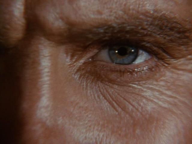 File:Steve's eye 4J.jpg