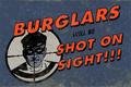 Burglarsshotonsight.png