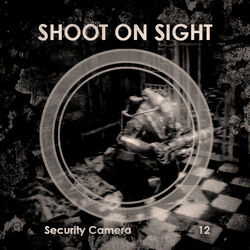 Security Shoot On Sight
