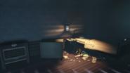 BaS1 Investigation 3