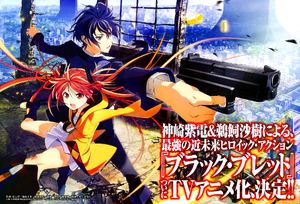 Black Bullet Anime Promotional Poster