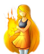 The Tender Flame by Griddles