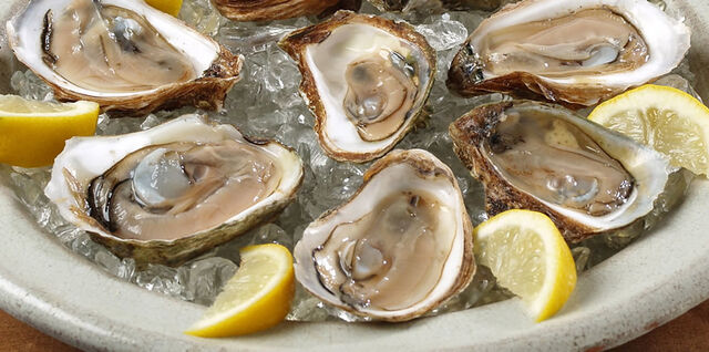 File:Oysters.jpg