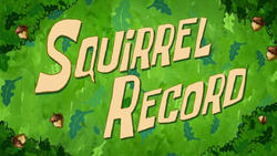 Squirrel Record.png