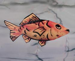File:C'fish.jpg