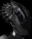 BL2-Zer0-Head-Vault Veteran-Arachn1d