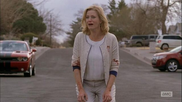 File:5x14 - Skyler on road.jpeg