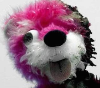 File:PinkTeddy.jpg