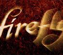 Fox Firefly Forums