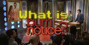 What is Burn Notice SNL