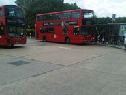 London Buses route 142