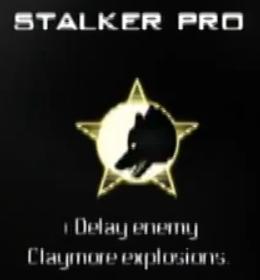 File:Stalker Pro MW3 CreateAClass.png
