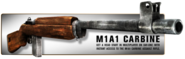 M1A1 Preorder WaW