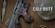 American menu screen CoD1