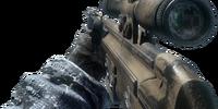 PSG1/Camouflage