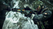MK14 EBR Heartlands Third Person CoDG