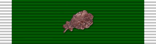 File:Medal, Green Heart with Oak Leaf.png