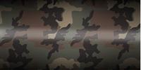 ERDL Camouflage