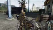 AN 94 Paladin First person Reloading BOII