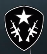 File:Squad Assault Insignia CoDG.png