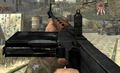 FG42 WaW.png