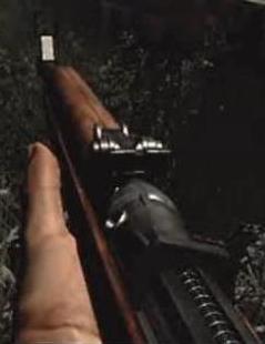 File:Gewehr 43 CoD3.png