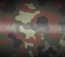 Berlin Camouflage