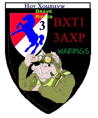 File:Warpigs Patch.jpg