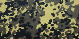 File:Flecktarn menu icon BOII.png