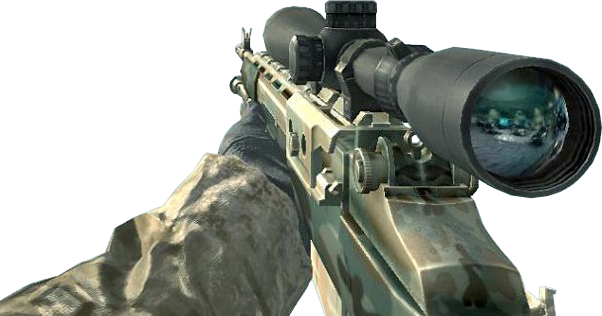 File:M21 Woodland CoD4.png