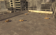 Teddy Bears Highrise MW2