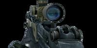 M14 EBR/Attachments
