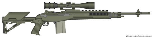 File:PMG My M14 EBR.jpg