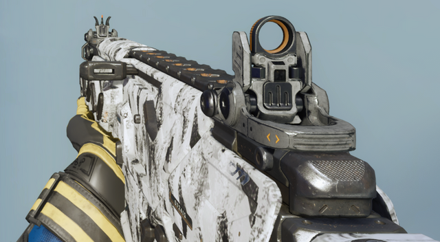 File:Peacekeeper MK2 First Person Ash Camouflage BO3.png